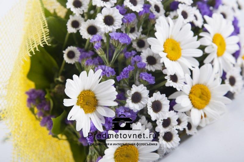 Предметная съёмка — фотографируем цветы